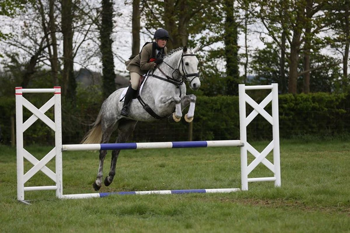 Thyme competing