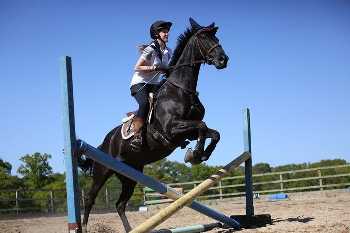 Brodie jumping her Stallion
