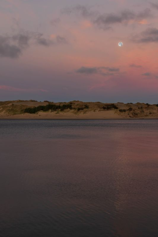 Moonset in Pink Sky Over Sand Dunes