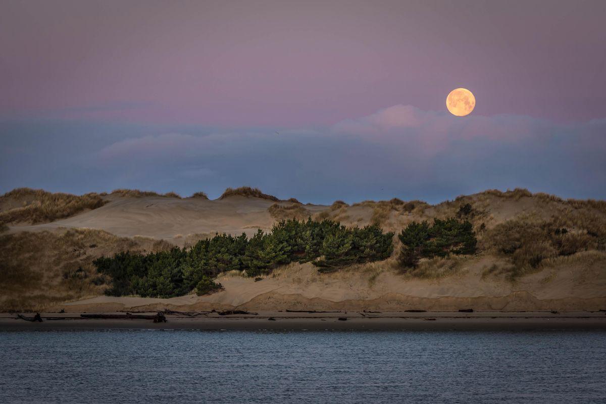 Moon Setting Over Sand Dunes