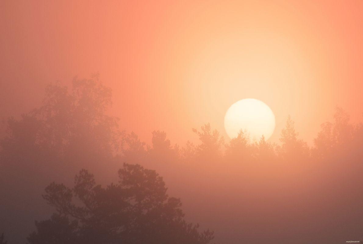 The morning sun is foggy.