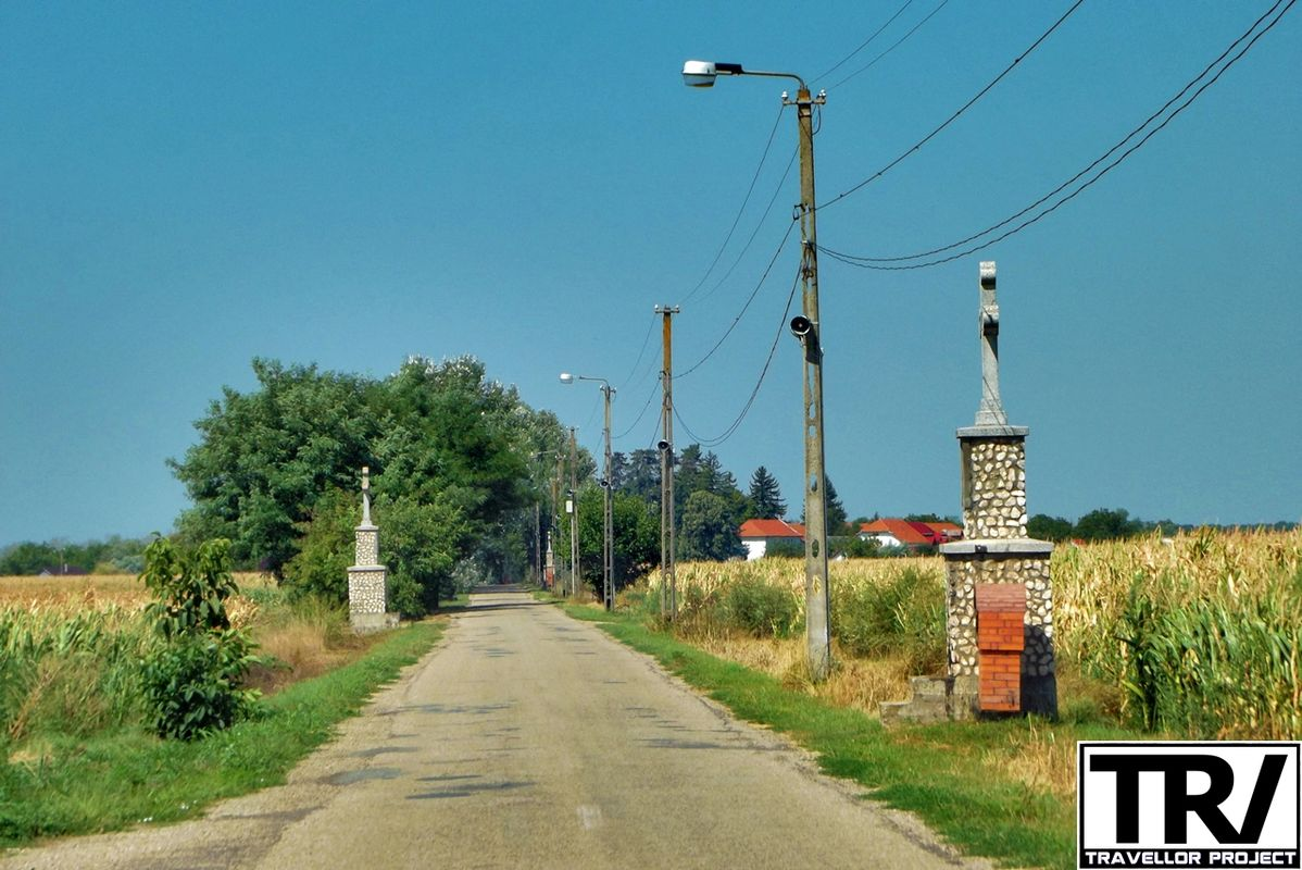 Road to Hodos-Bodrog Monastery