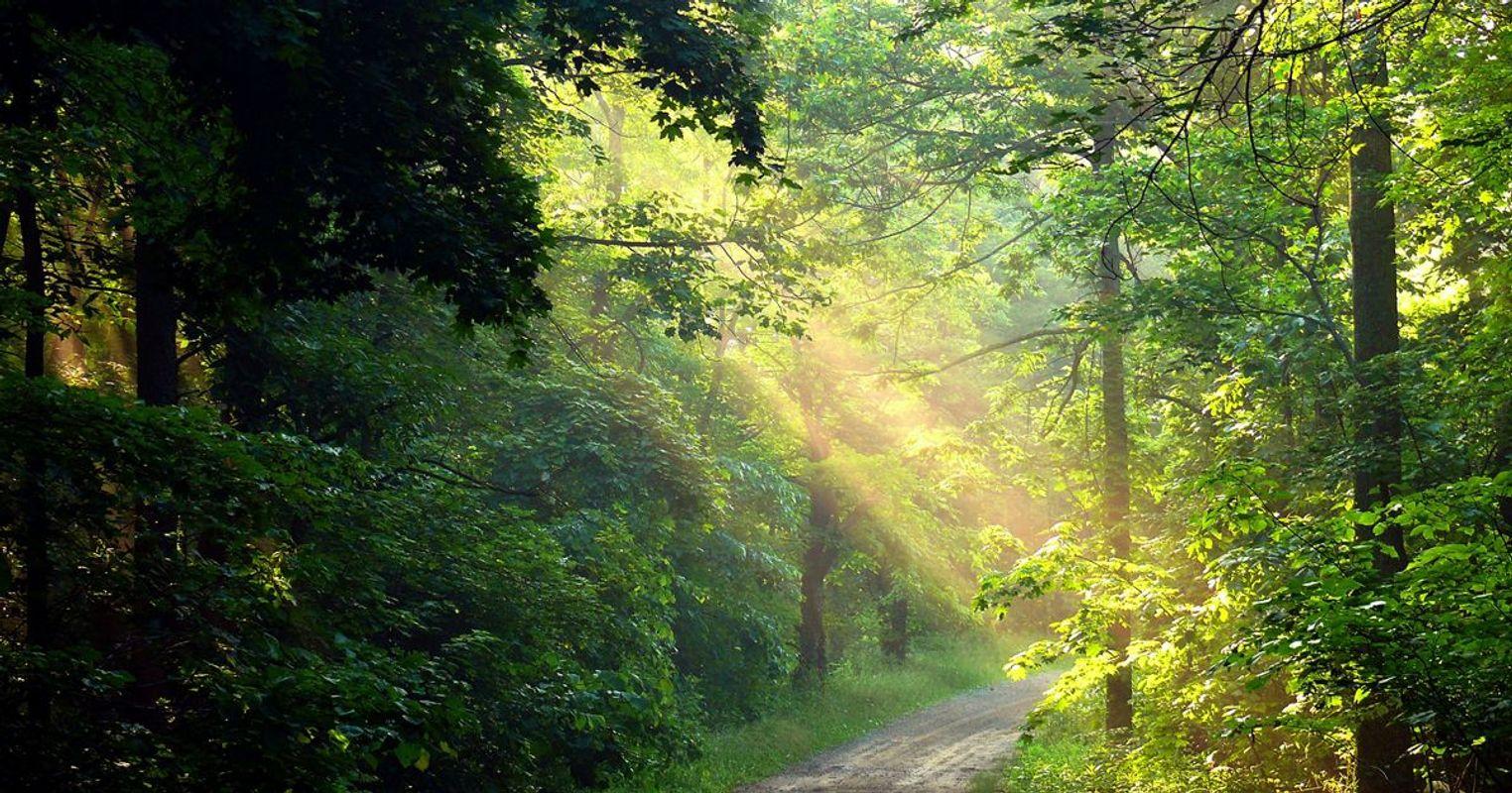 EOA_Sunshine-Ridge-Corridor_Lucy-Miller-TNC