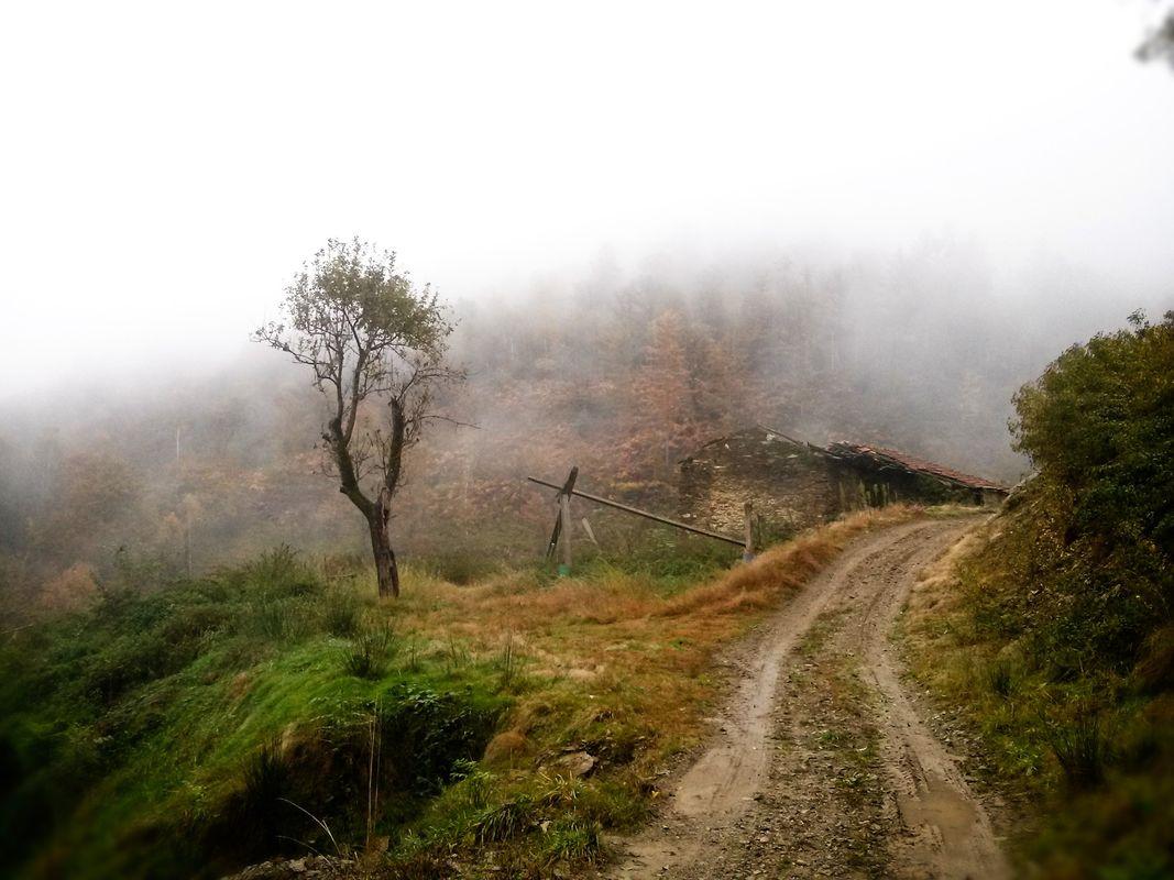 Vergante - Hill trail - Autumn 2017