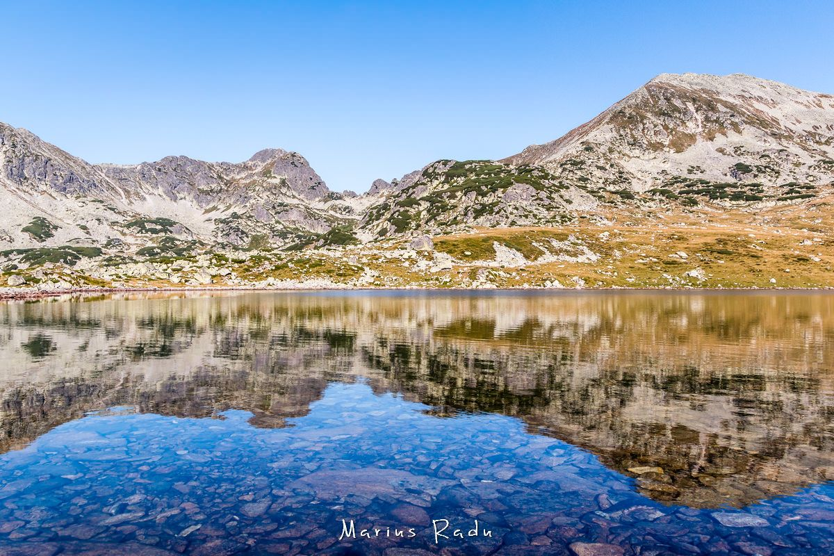 Vivid blue reflection