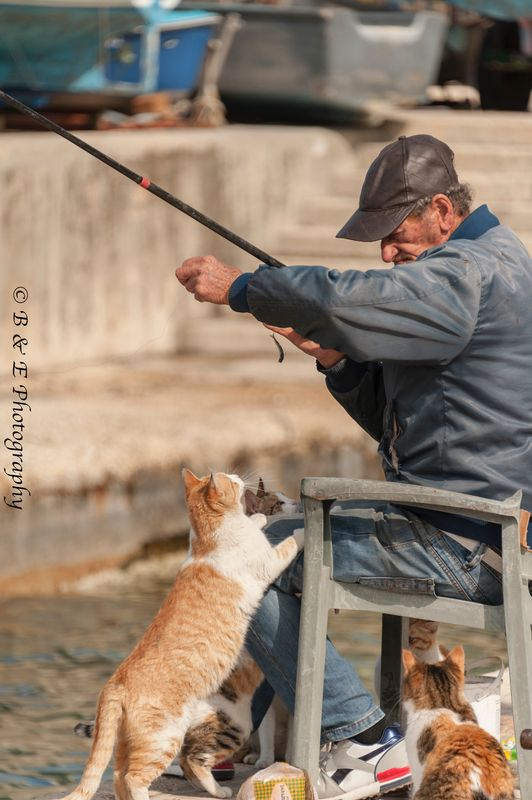 Fishing for lunch with a cat eagerly awaiting fresh fish.