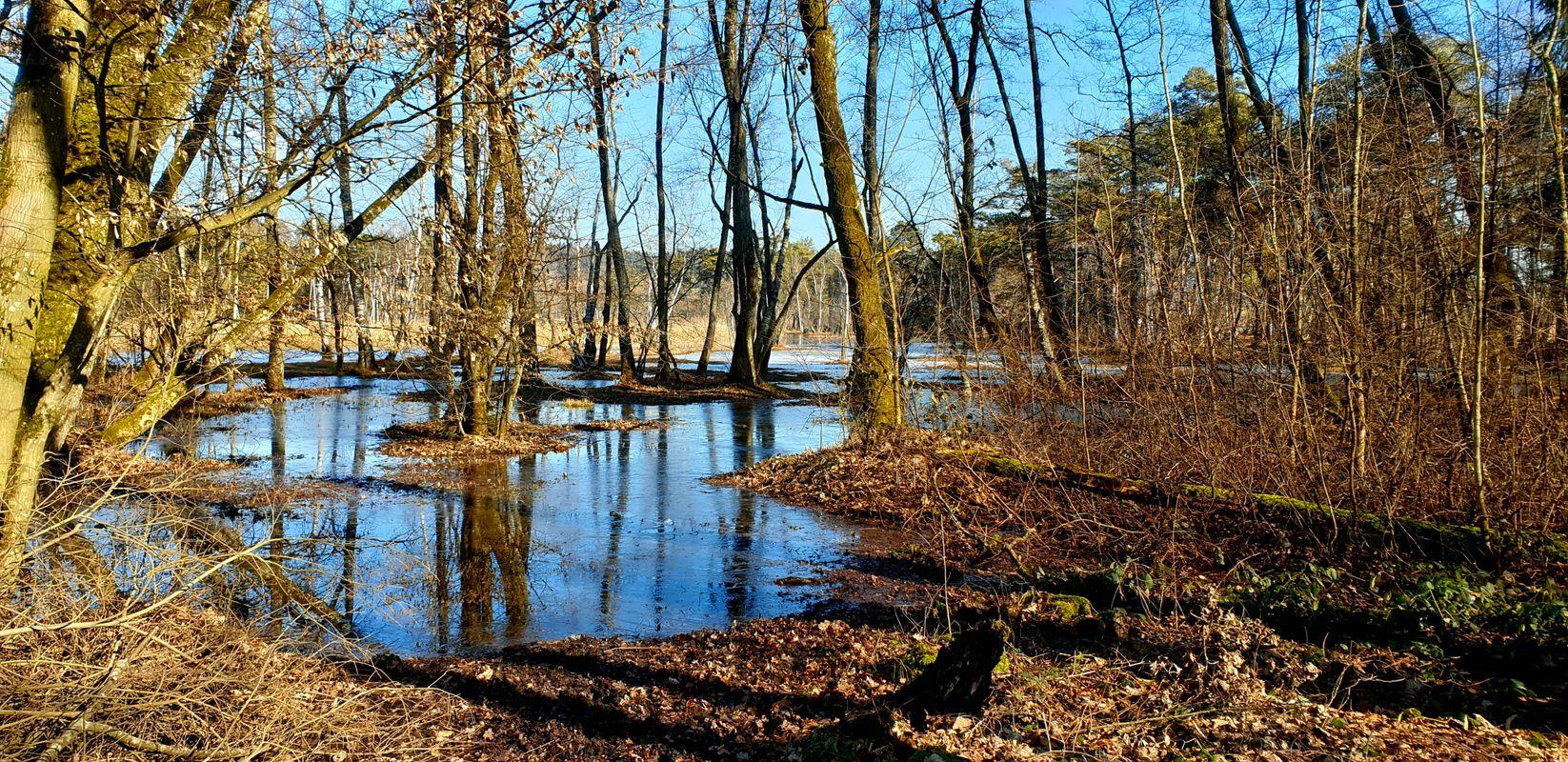 Frozen Lake reflecting the blue sky