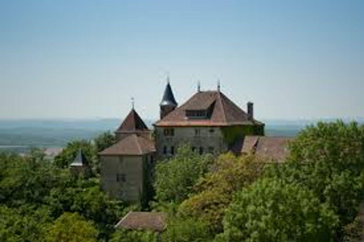 Montagnieu castle