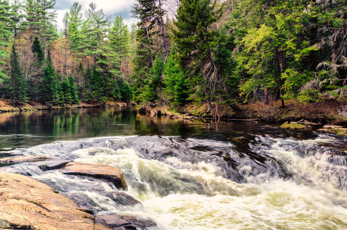 Trout-fishing river in the Adirondacks