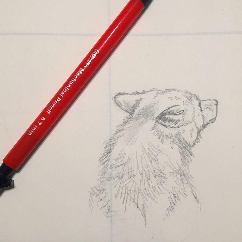 Familiar Sketch