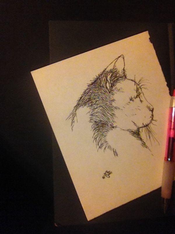 Feline Silhouette-Pen
