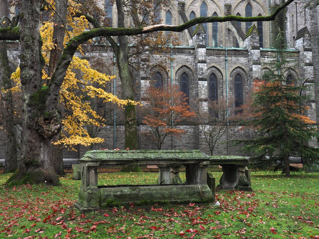 Autumn at Christchurch Cathedral