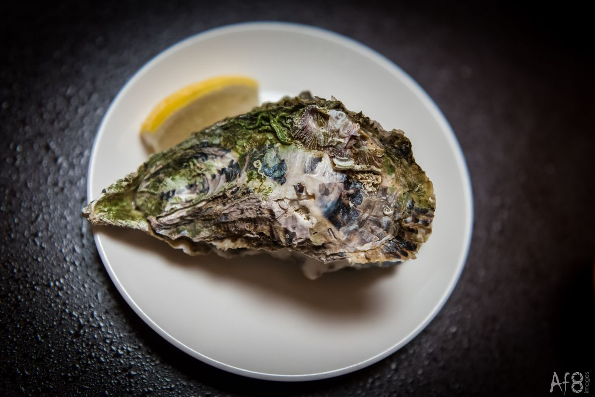 Closed oyster on a plate with a slice of lemon