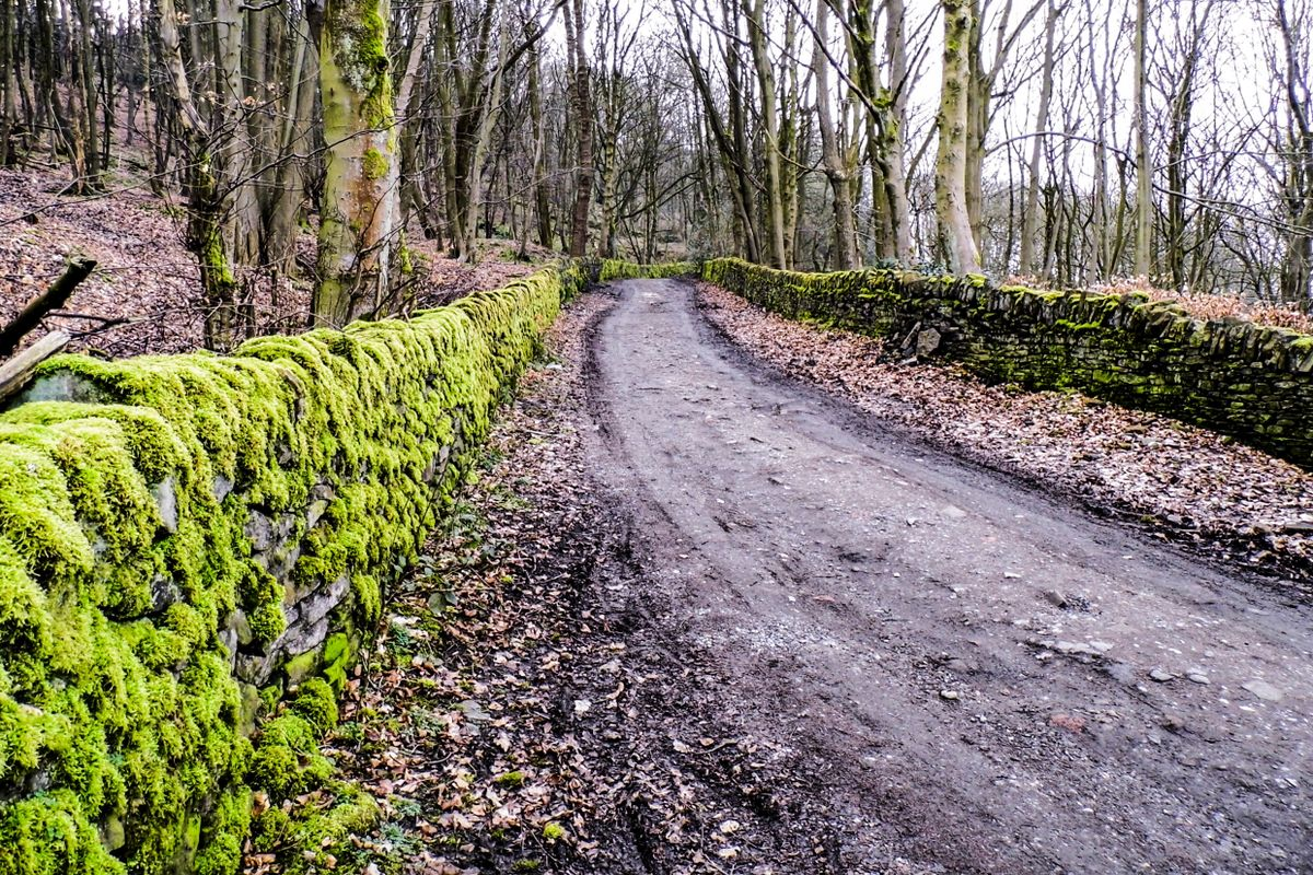 Road Through North Dean.