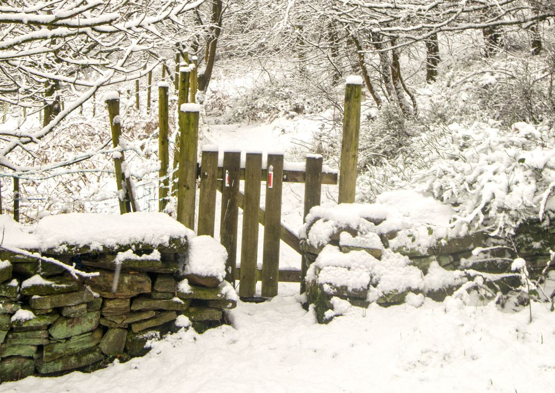 Snow Gate at North Dean Woods