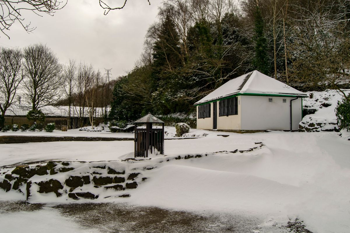 Snow at Allan Park.