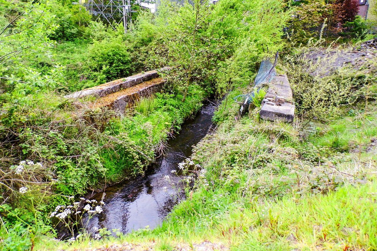 Overgrown Aquaduct.