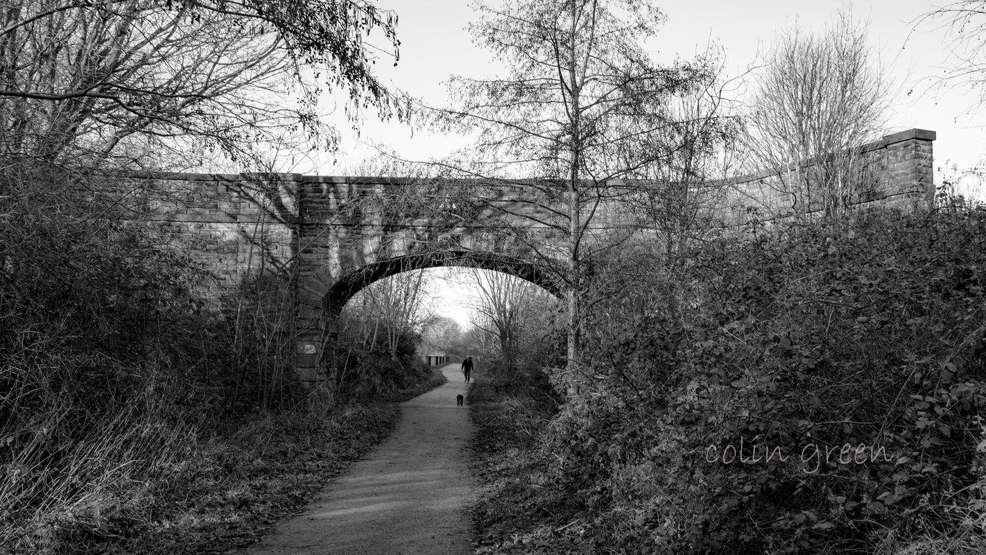Bridge on the Spen Valley Greenway