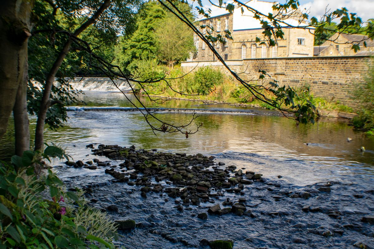 River Calder at Tenterfields