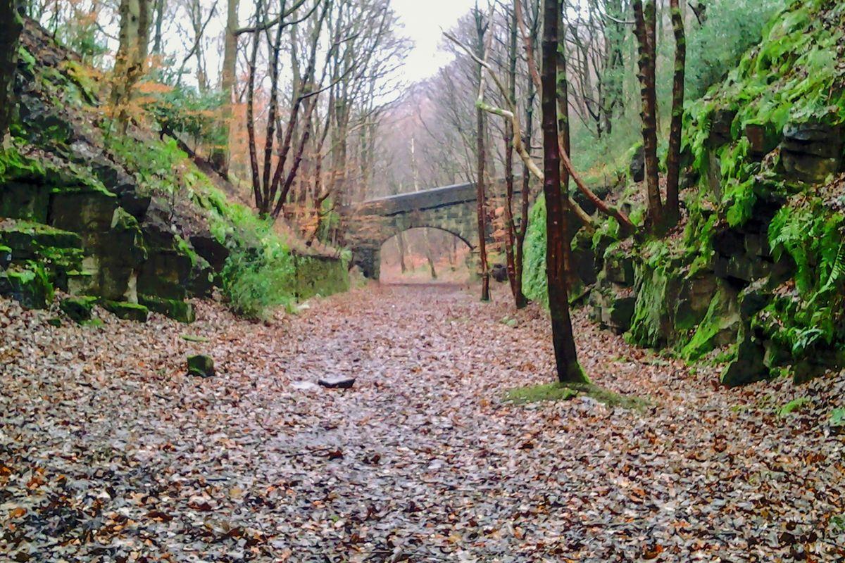 Bridge along the Trackbed.
