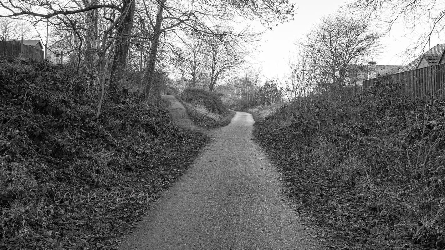 Spen Valley Greenway