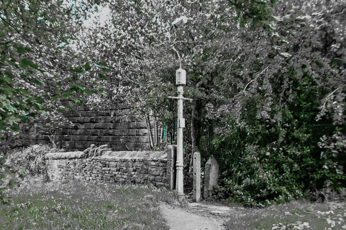 Lampost on the Corner
