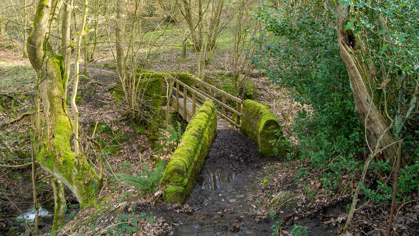 Donkey Bridge, North Dean Woods, Calderdale
