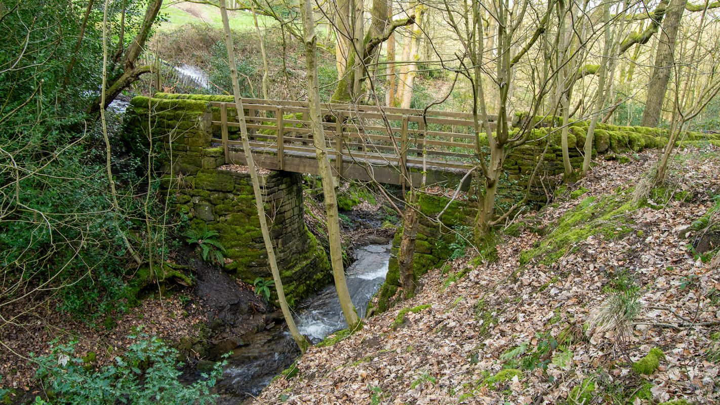Donkey Bridge, North Dean Woods