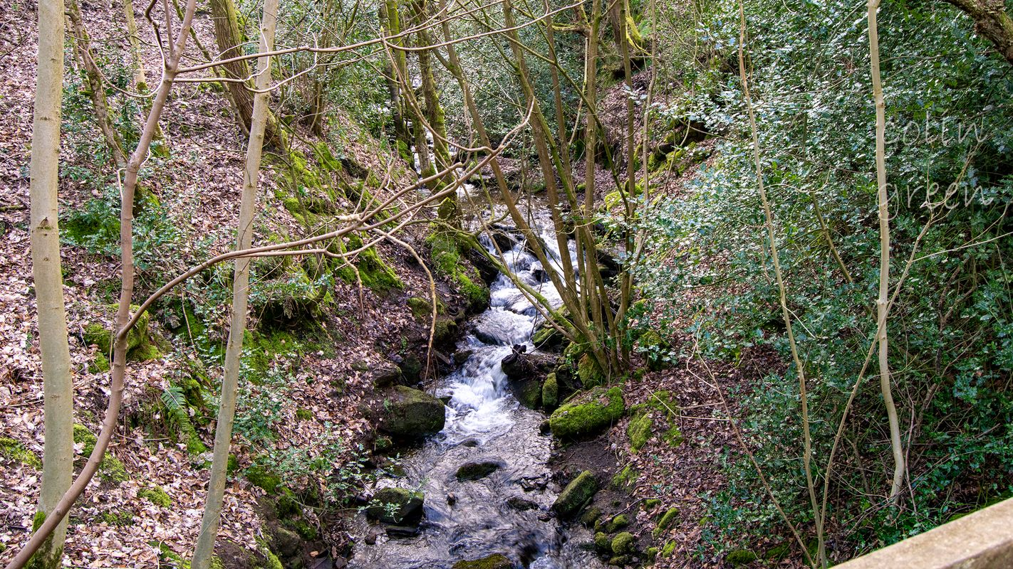 Upstream, Maple Dean Clough.