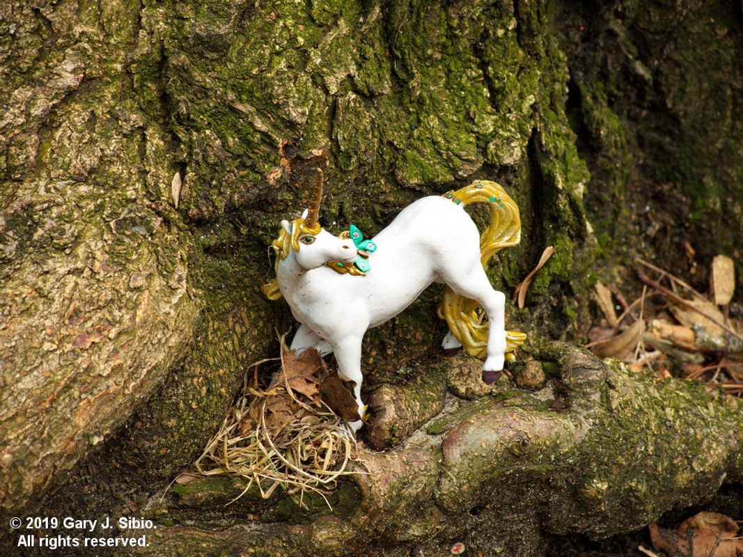 Toy Fairyland at the Base of a Tree 5 - A Unicorn (2019-04-02 15-16-40_01)