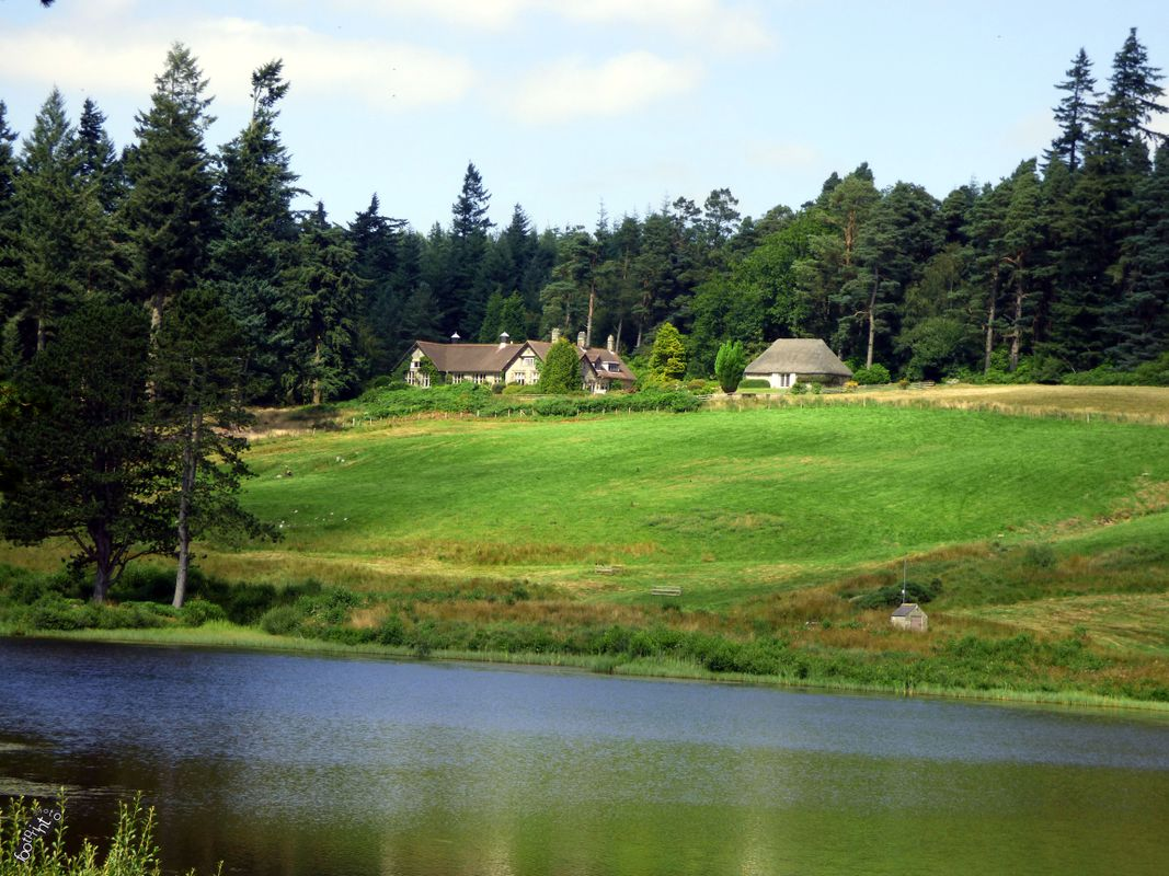 A Lakeside view at Cragside, National Trust Property