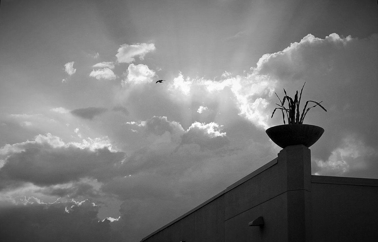 On A Cloudy Day in Phoenix, Arizona