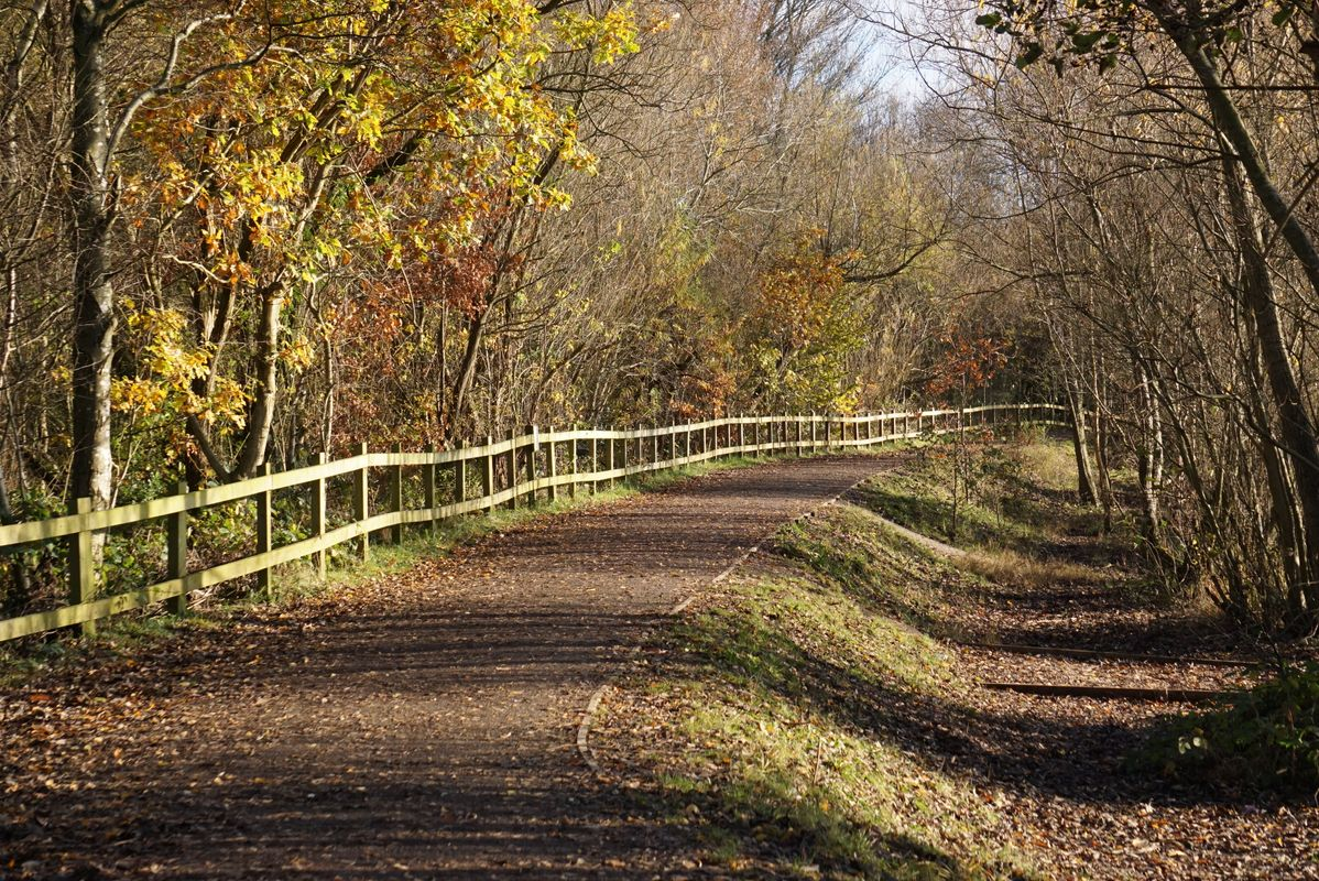 Fenced path