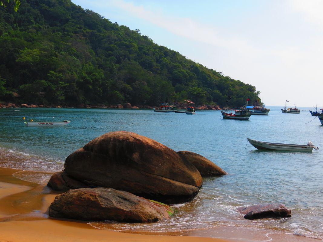 Praia_da_picinguaba_ubatuba-sp_-_panoramio