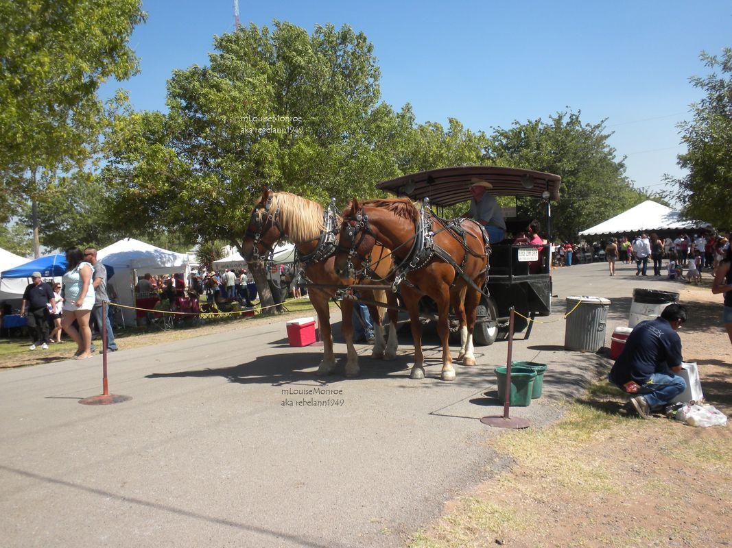 Las Cruces NM Wine Festival 1