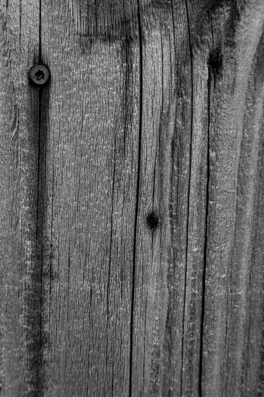 B&W Fence- Is there a Face?