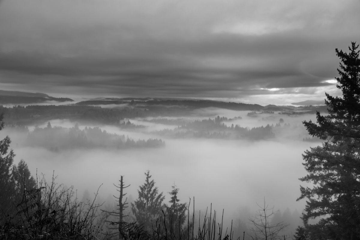 Foggy Sunrise B&W