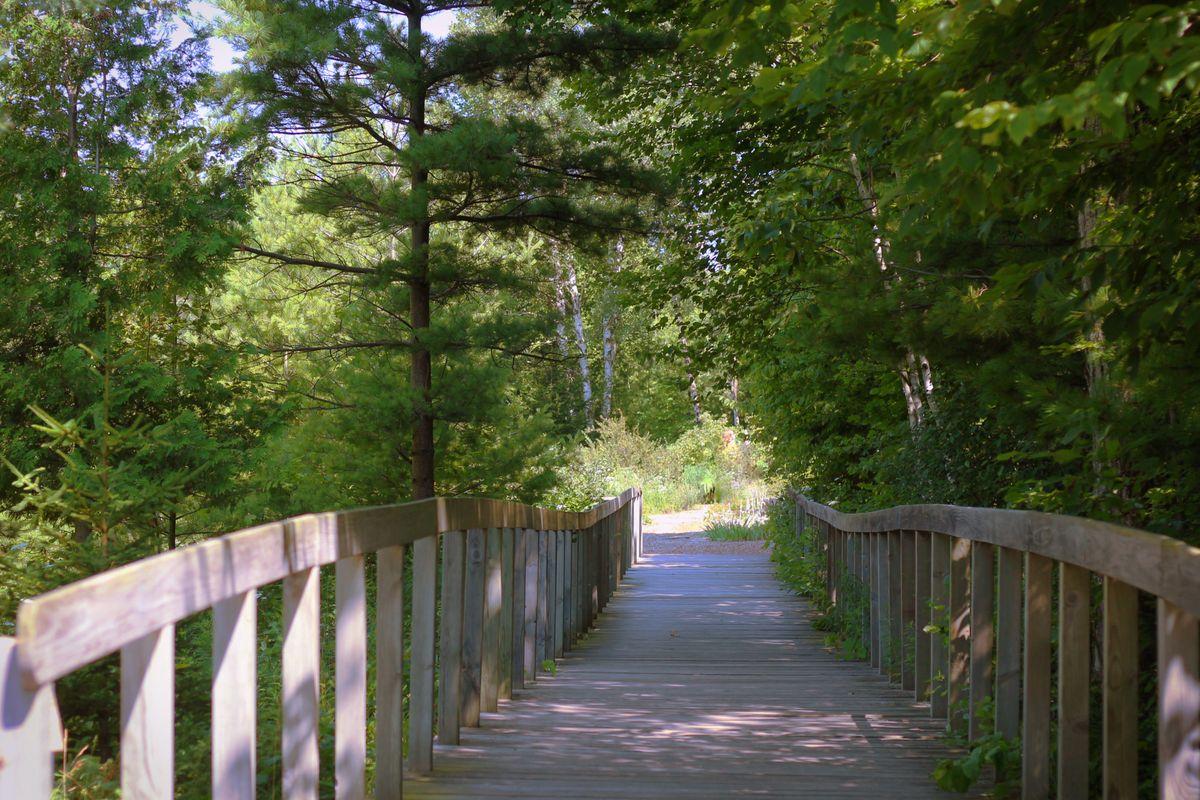 Bridge to a Church