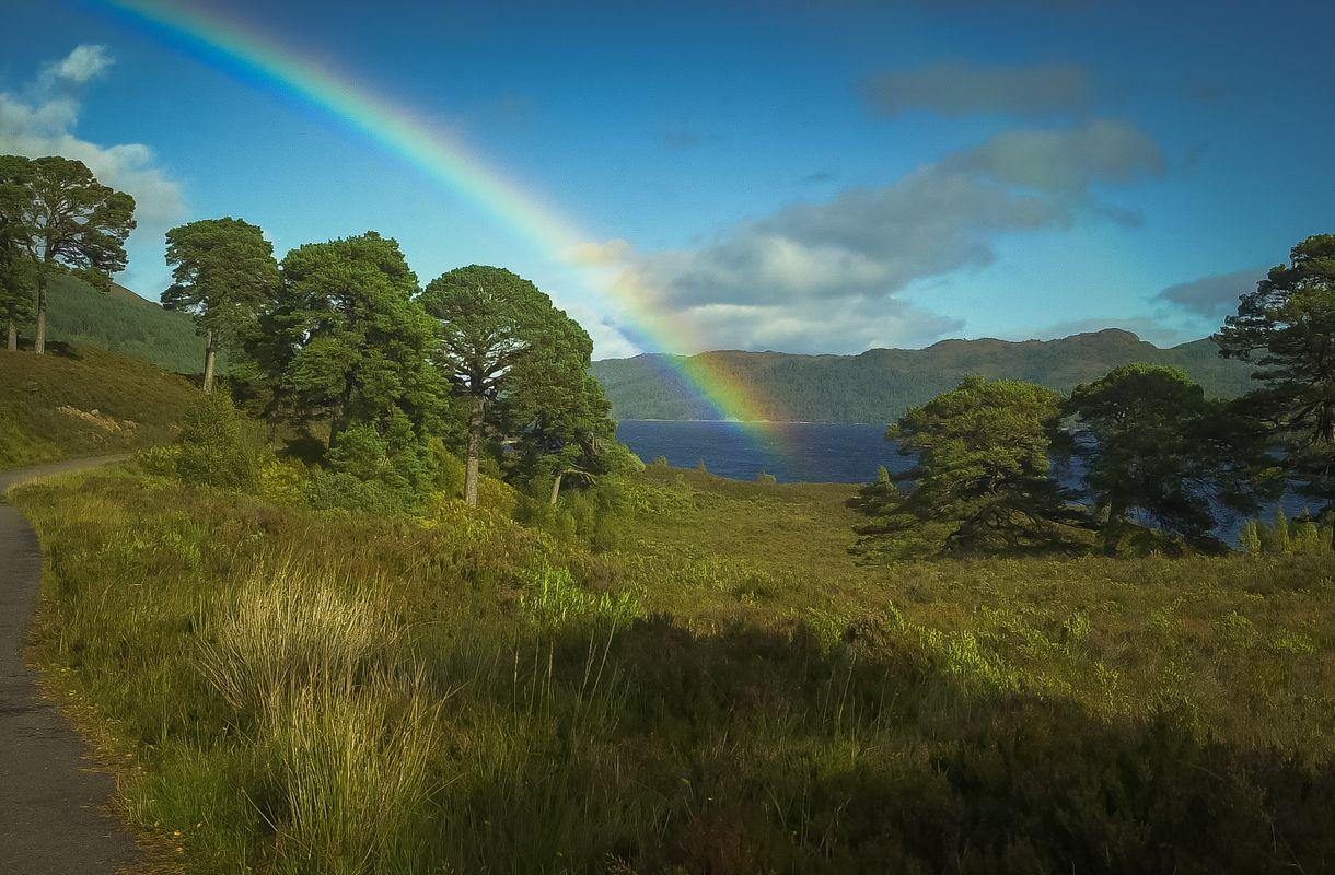 Rainbow in Glen Affric, Highlands, Scotland