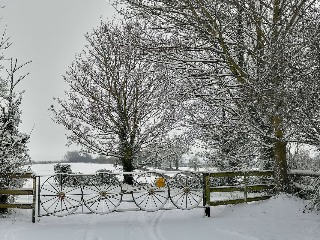 Farm Gate in the Snow, Duns Tew, Oxfordshire