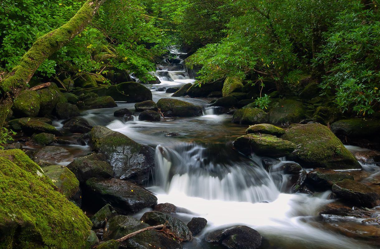 Owengarriff River below Torc Waterfall, Killarney National Park, County Kerry, Ireland