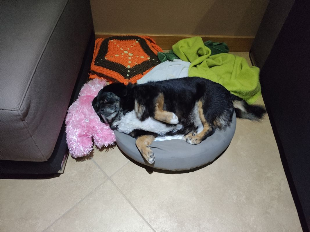 My baby is sleeping !