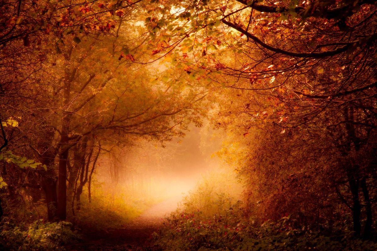 Mist glow