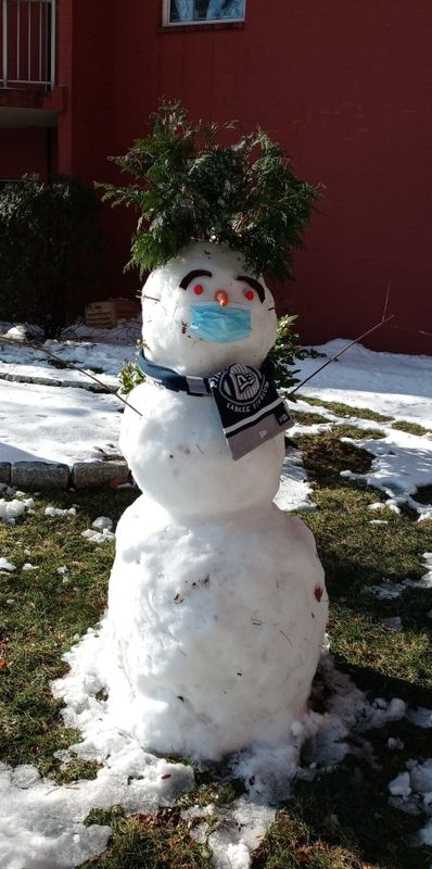 Covid snowman