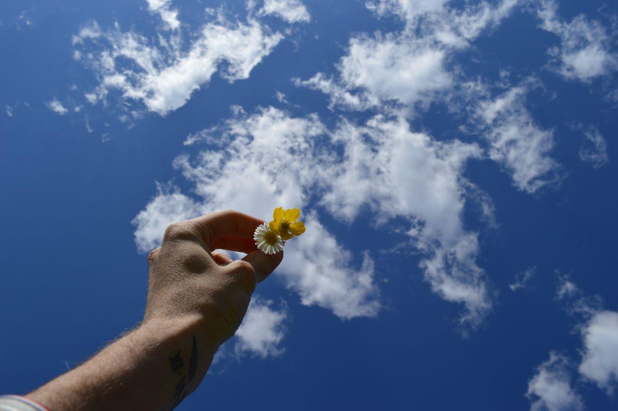 The flowery sky