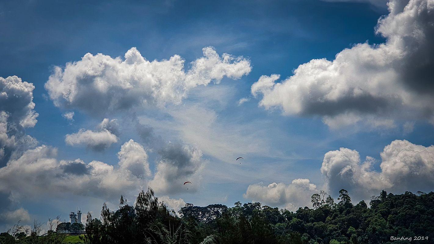 Paragliding #1