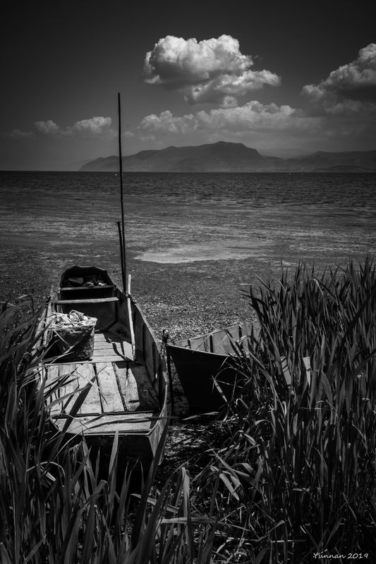 Serenity Lakeside #3