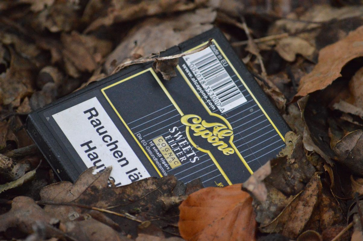 Cigar package int the forest