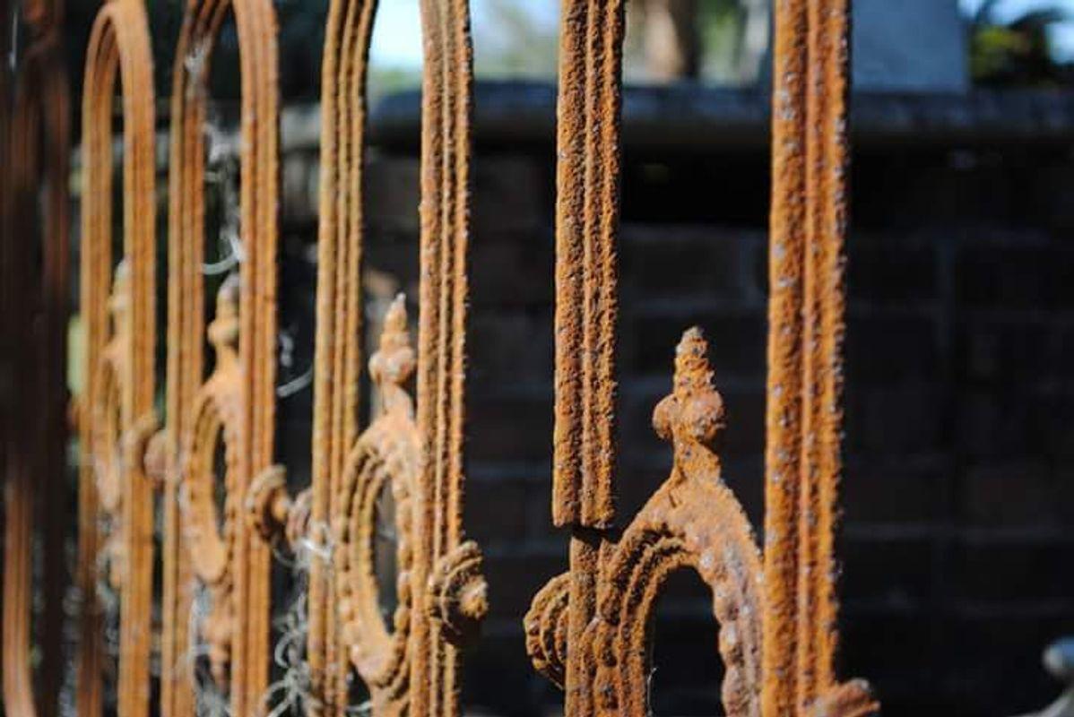 Savannah Gate