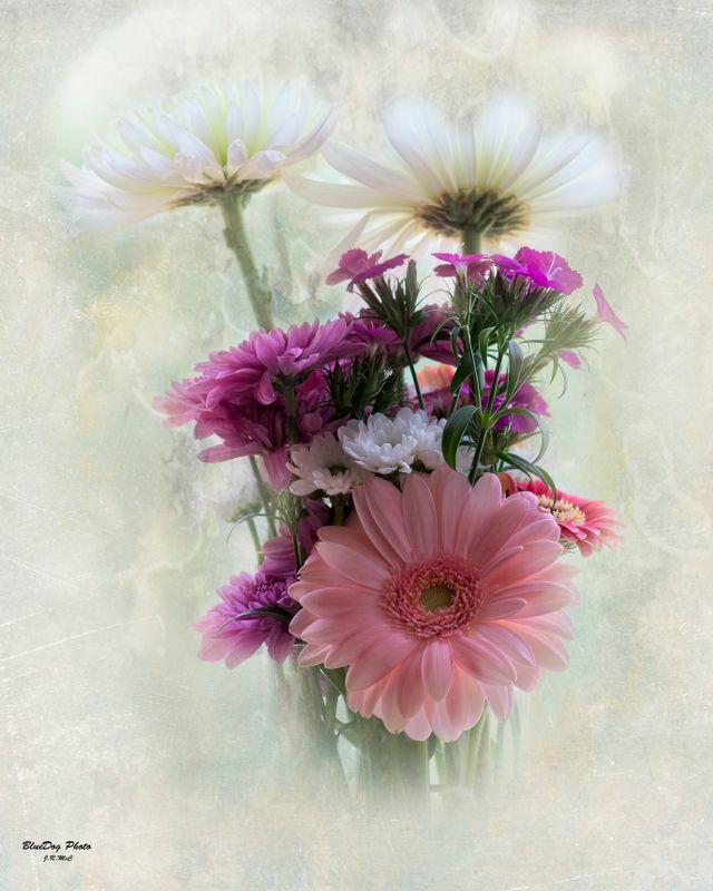Flowers still life  02-18 2019